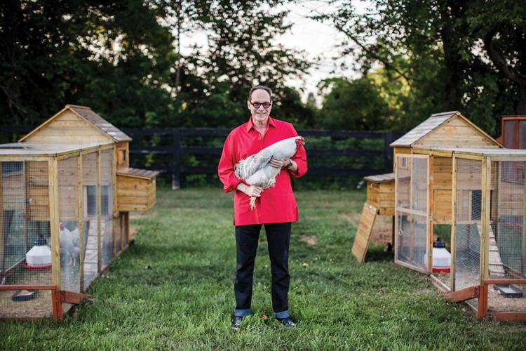 World-Wise Chickens