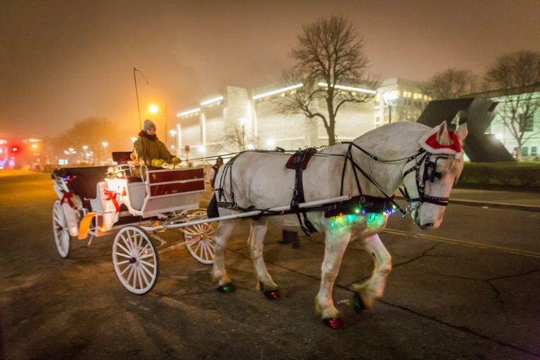 44th Annual Noel Night to Light Up Detroit's Midtown