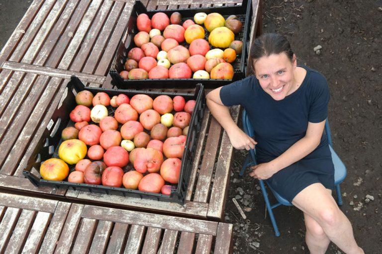7 Proven Fall Tips for Detroit Gardeners