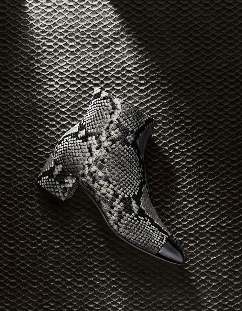 Spotlight On Snakeskin