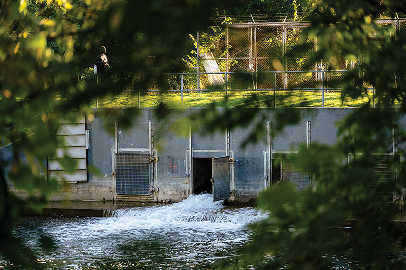 high hazard dams