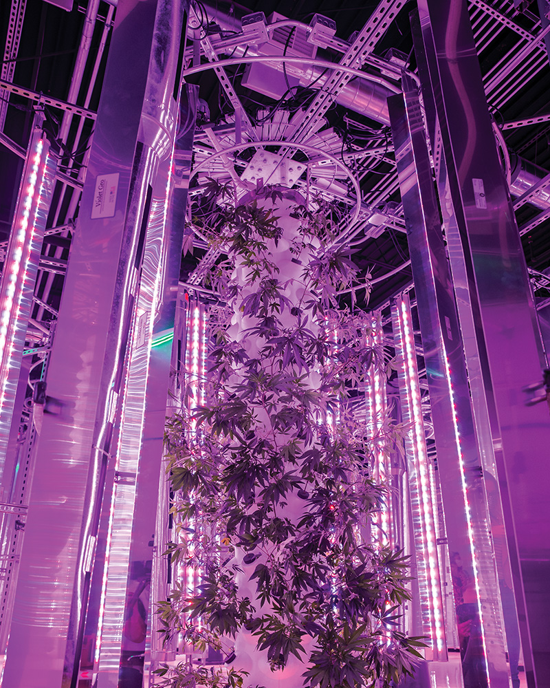 future grow solutions
