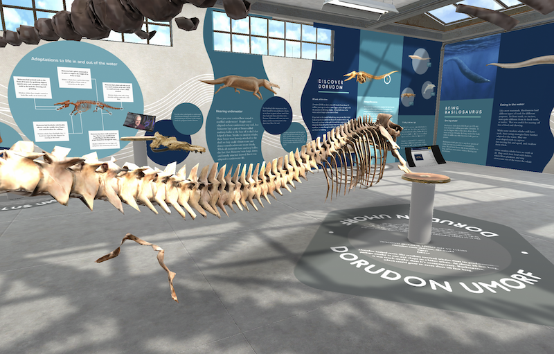prehistoric whale