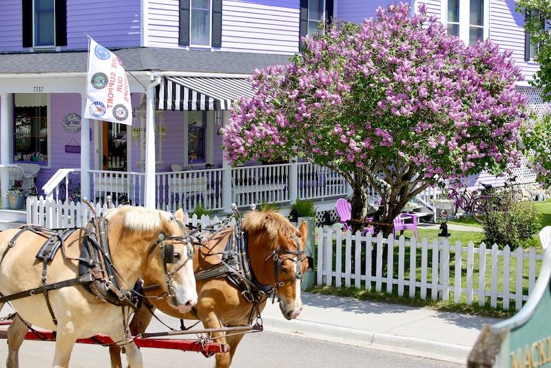 lilac festival - mackinac island
