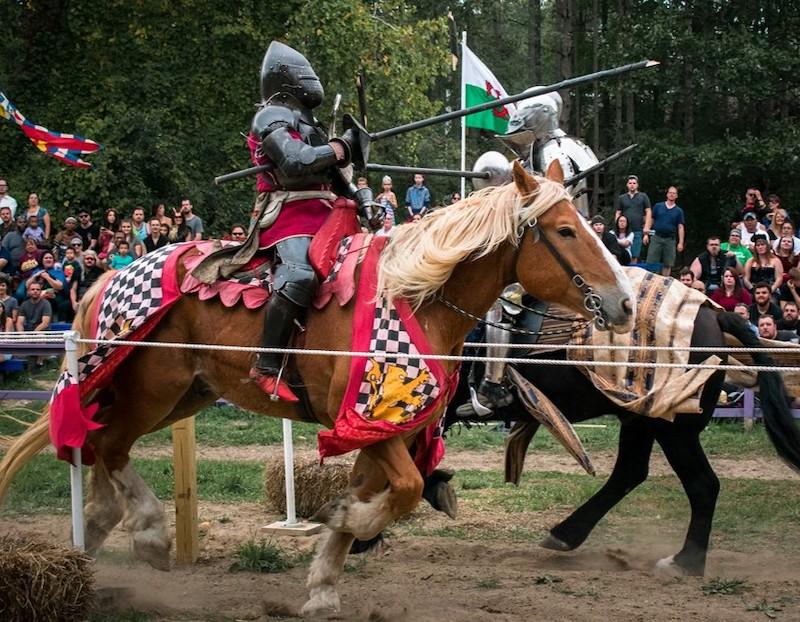 Michigan Medieval Faire PC Michigan Medieval Faire