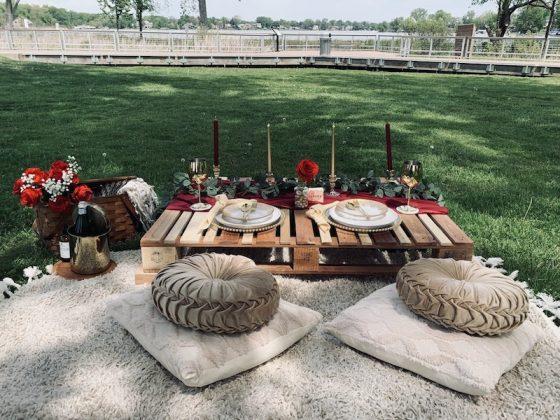 mi picnic project